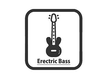 ELECTRIC BASE